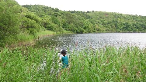 湖沼の野外調査