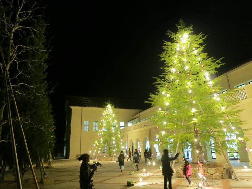 2015.11.30 KCSキャンパスのコモンズ前に今年もツリーが登場(12/9撮影)