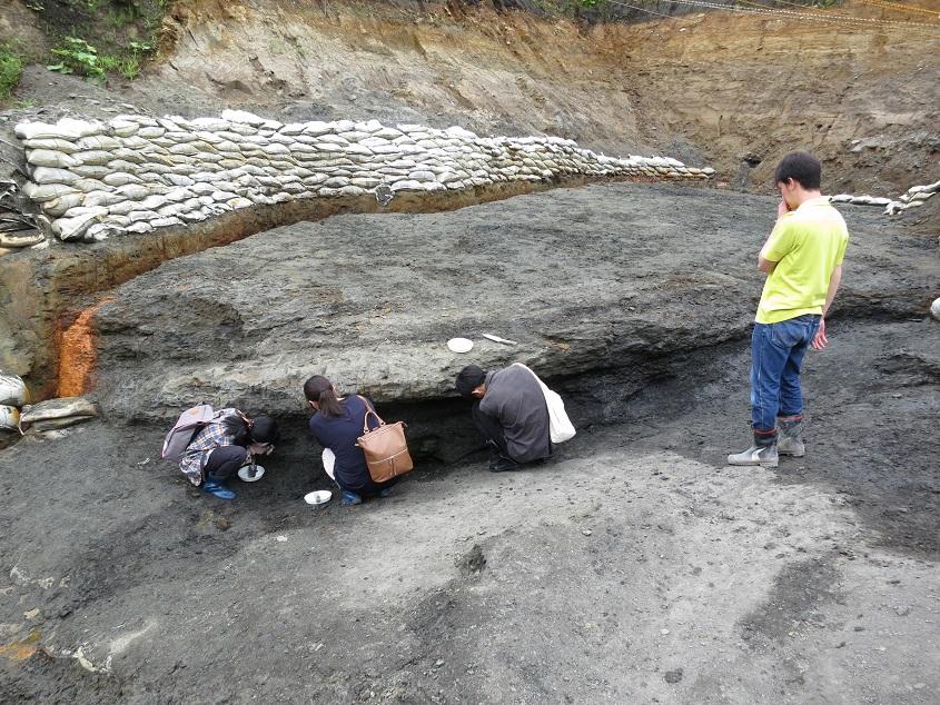 2017.08.04 久慈層群の石炭層から琥珀を捜査中