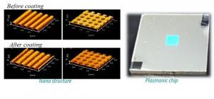 1D2D plasmonic chip AFMII